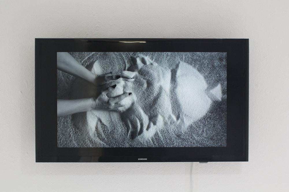Surface  (still) video, 04:13, 2016