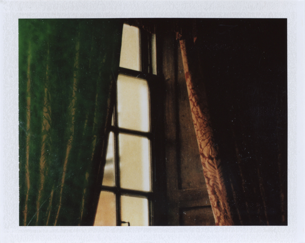 In the midst  Instant film photograph, 2013   Info + Statement