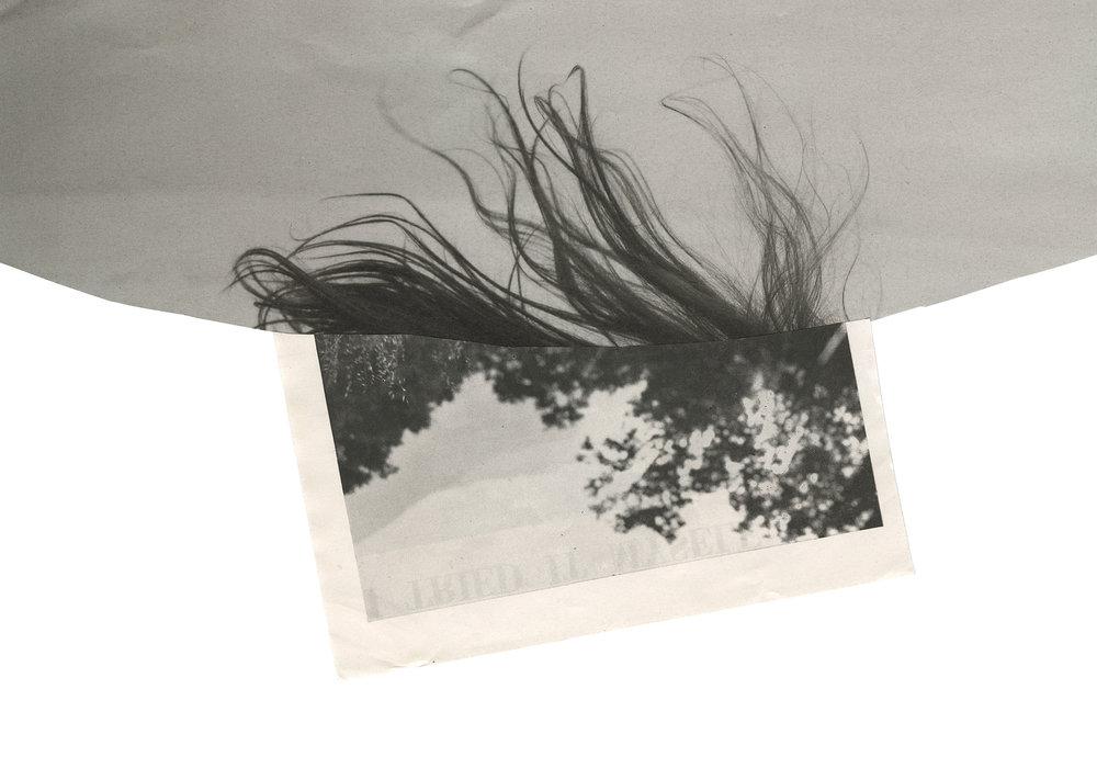 "Entrance  collage on vellum, 2014, 18x15""   Statement + Info"