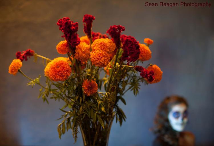Sean Reagan Photography
