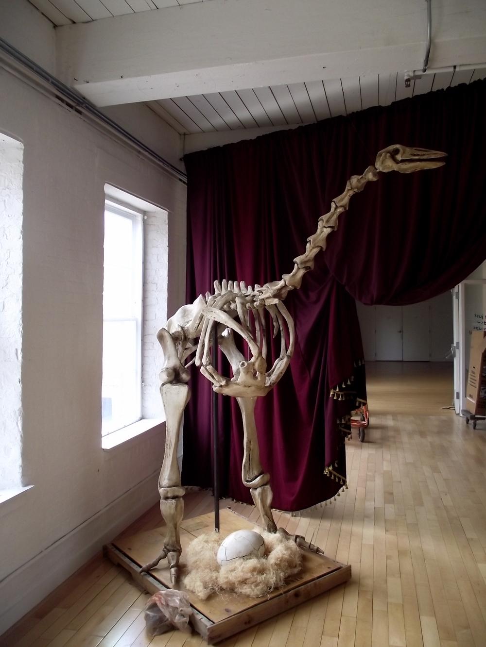 Resurrecting the Elephant Bird, 2007. Mass MoCA 2012