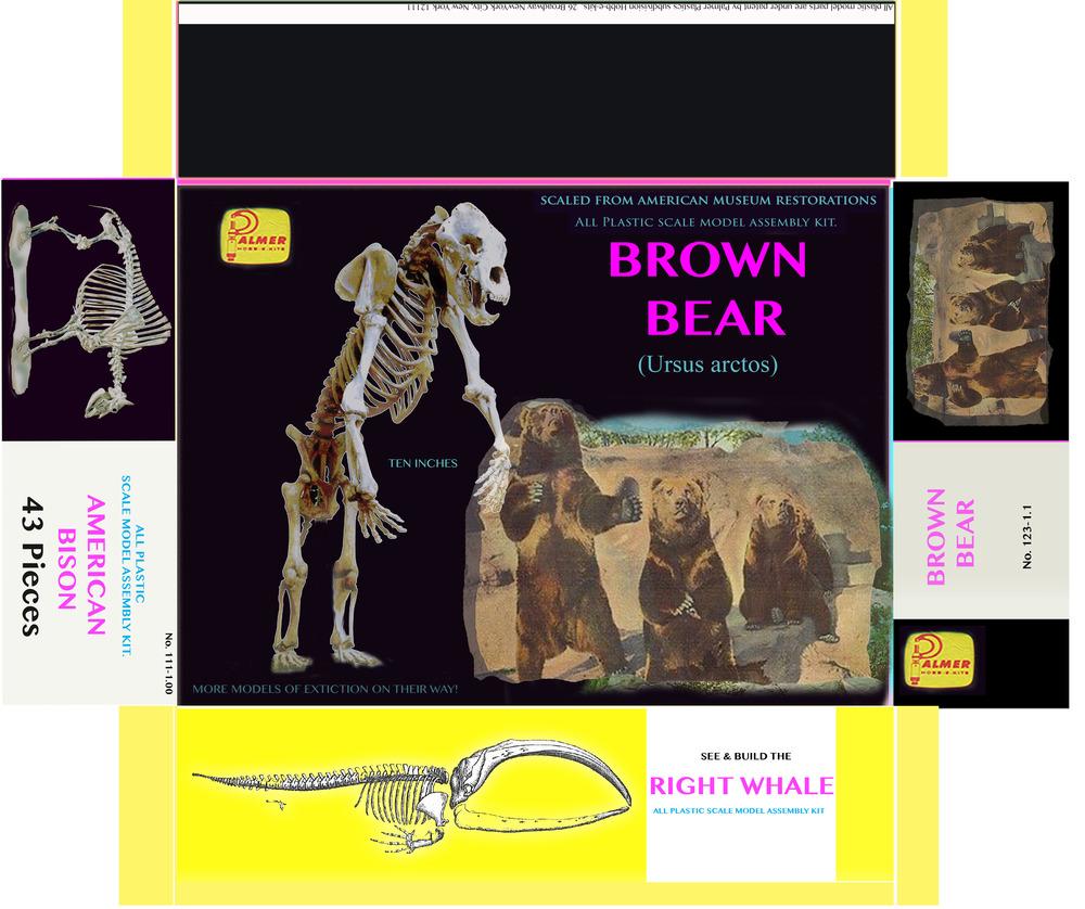bearmodelbox.jpg