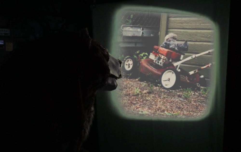 The Mechanical Bear and Thunderbird's Wilderness Dream, 2017.