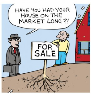 Reasons-Your-Home-Isn't-Selling-Karly-Moore-Toronto-Real-Estate.jpg