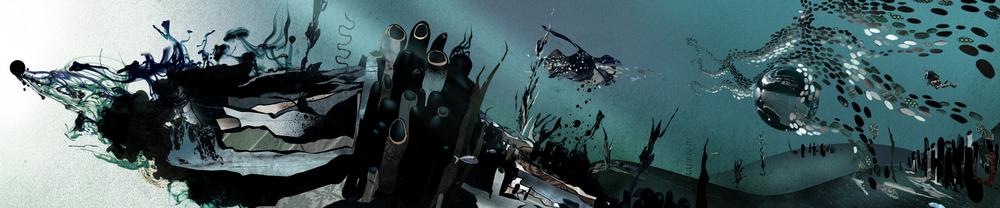 underwaterLongFrame.jpg