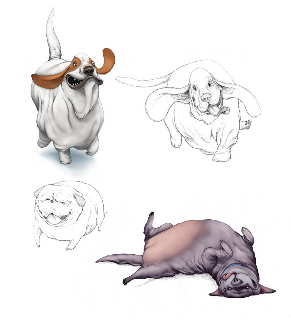 dogSketch04.jpg