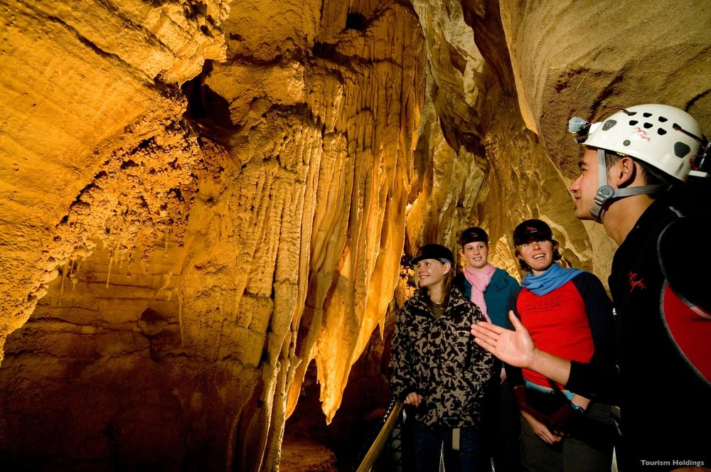 AD127-Waitomo-Caves-Waitomo-Tourism-Holdings.jpeg