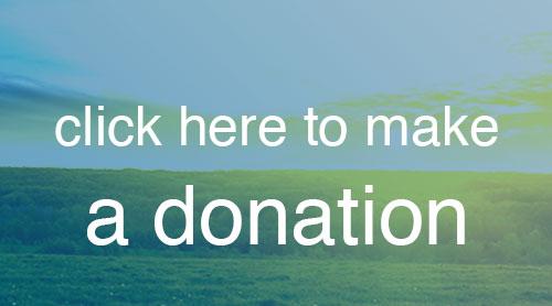 block-online-donation.jpg