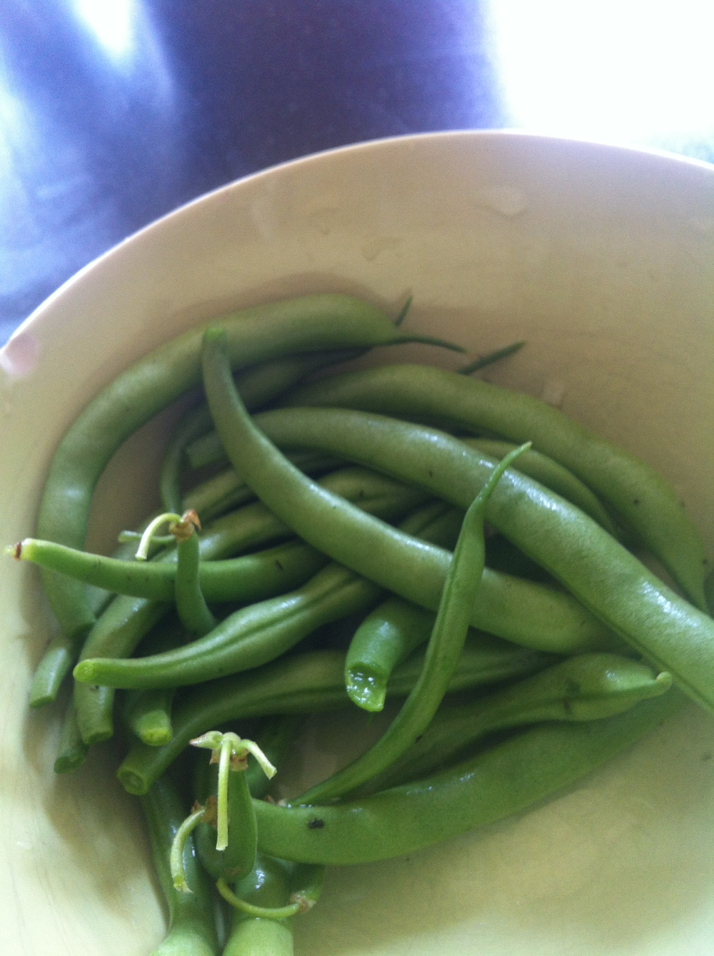 String beans from my little garden!! So proud, I am.