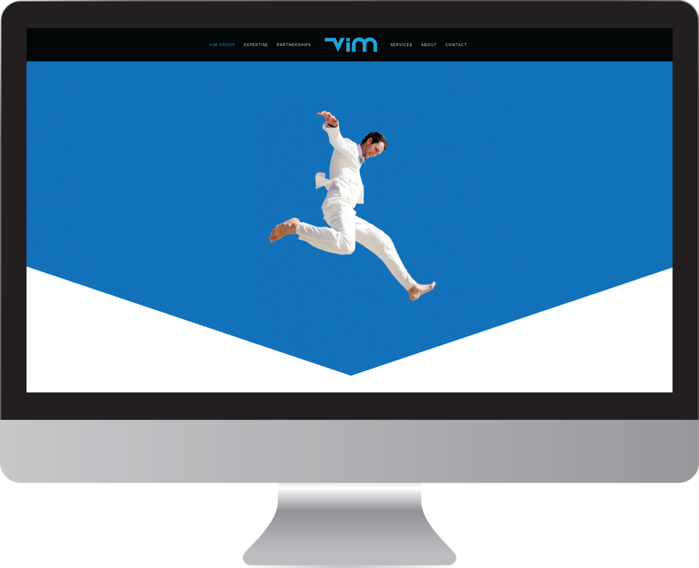 Vim_group_website_design1.png