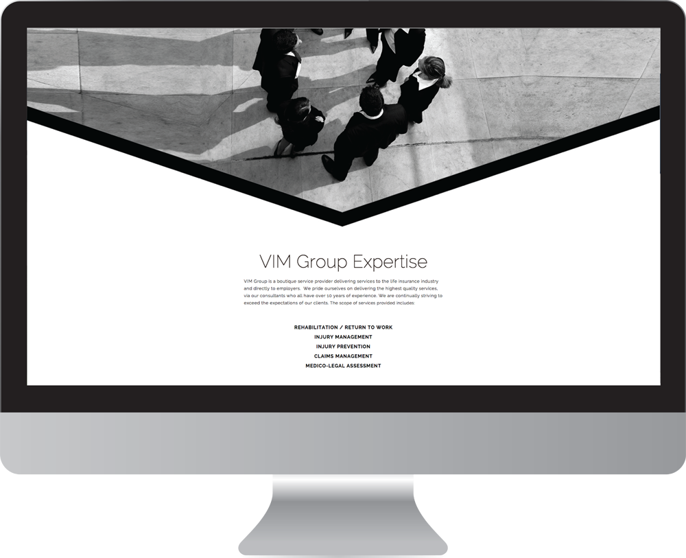 Vim_group_website_design3.png