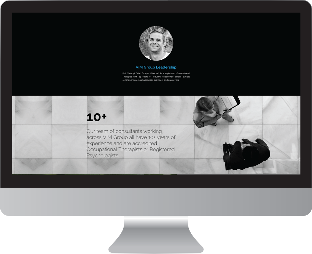 Vim_group_website_design4.png