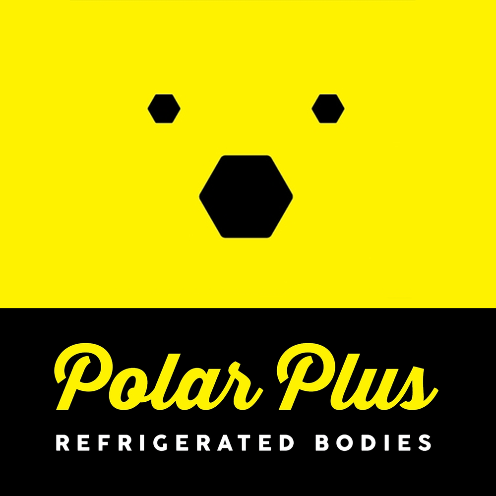 Polar Plus Logo Design