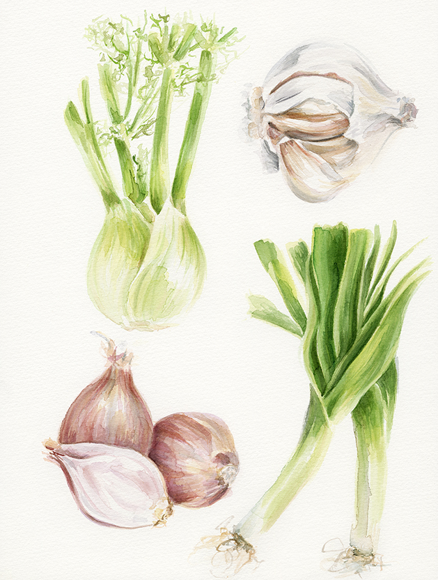 Garlic and Shallots.jpg