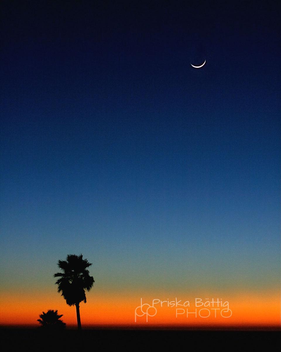 sunset-logoPriska BättigPriska Bättig.jpg