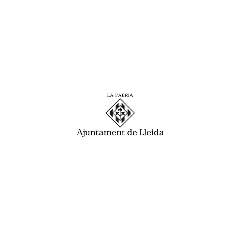 AJUNTAMENT-DE-LLEIDA-casaenforma.jpg