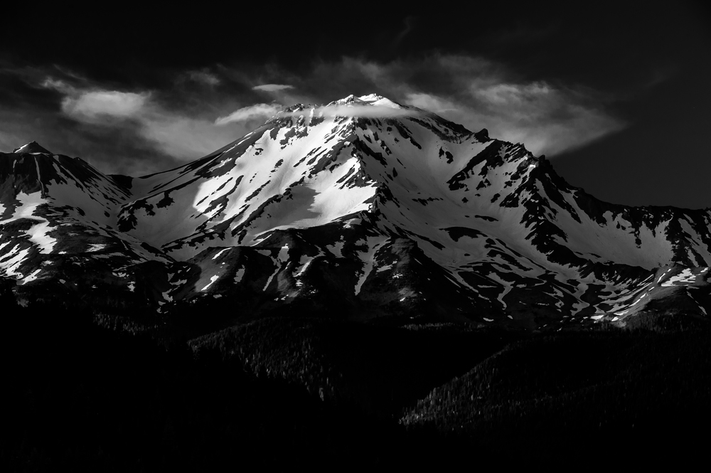 2016_Shasta-2.jpg