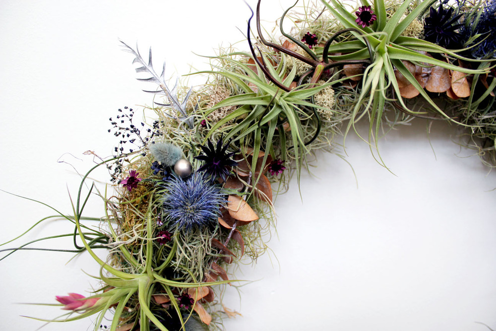 air plant wreath.jpg