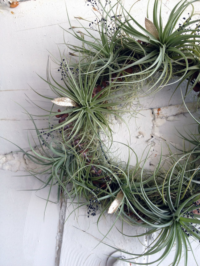 air plant wreath A2.jpg