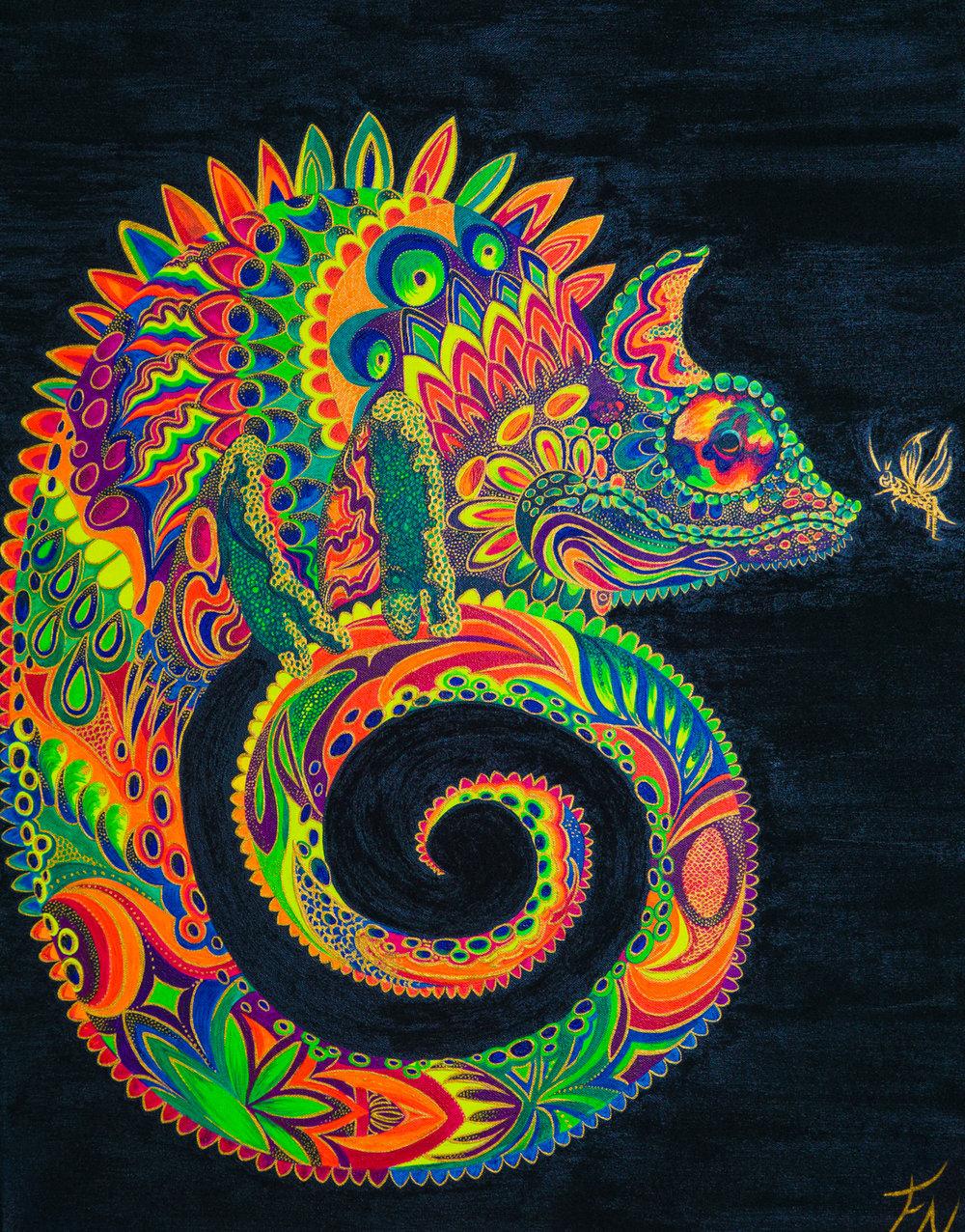 Colorfull Kameleon