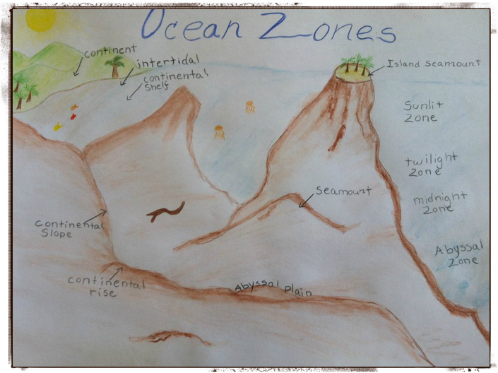 main lesson ocean zones framed.png