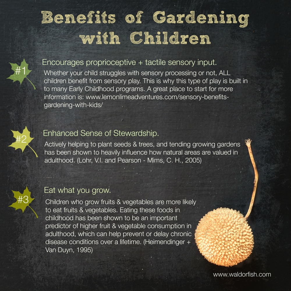Of course, there are myriad reasons to garden with children! These 3 strike us as being, perhaps, the most important.