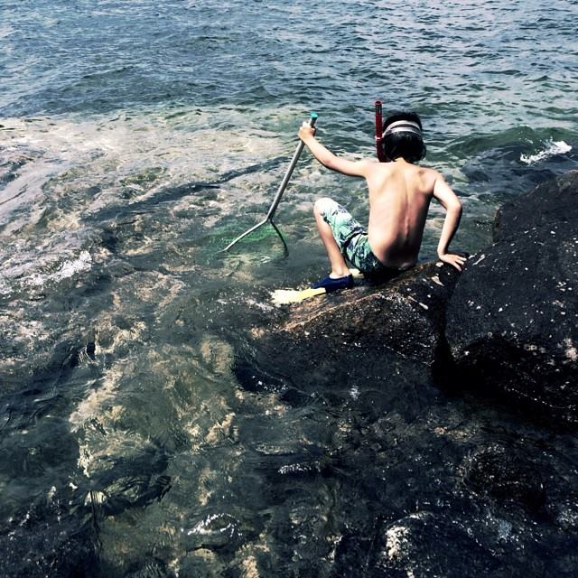 View on Instagram when the pacific meets the atlantic...you get little water hunters. #netfishing #ancestralmemories