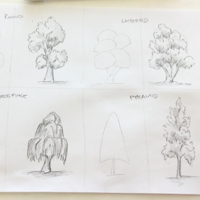Sept - Week One - pencil & paper - (tree reference chart)