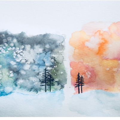 Feb- Week Three - Watercolor pencils and crayons