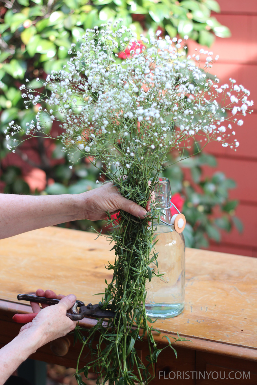 Take 1/3 bunch of baby's breath.  Hold it up and cut where it lines up with the inside of the bottom of the bottle.
