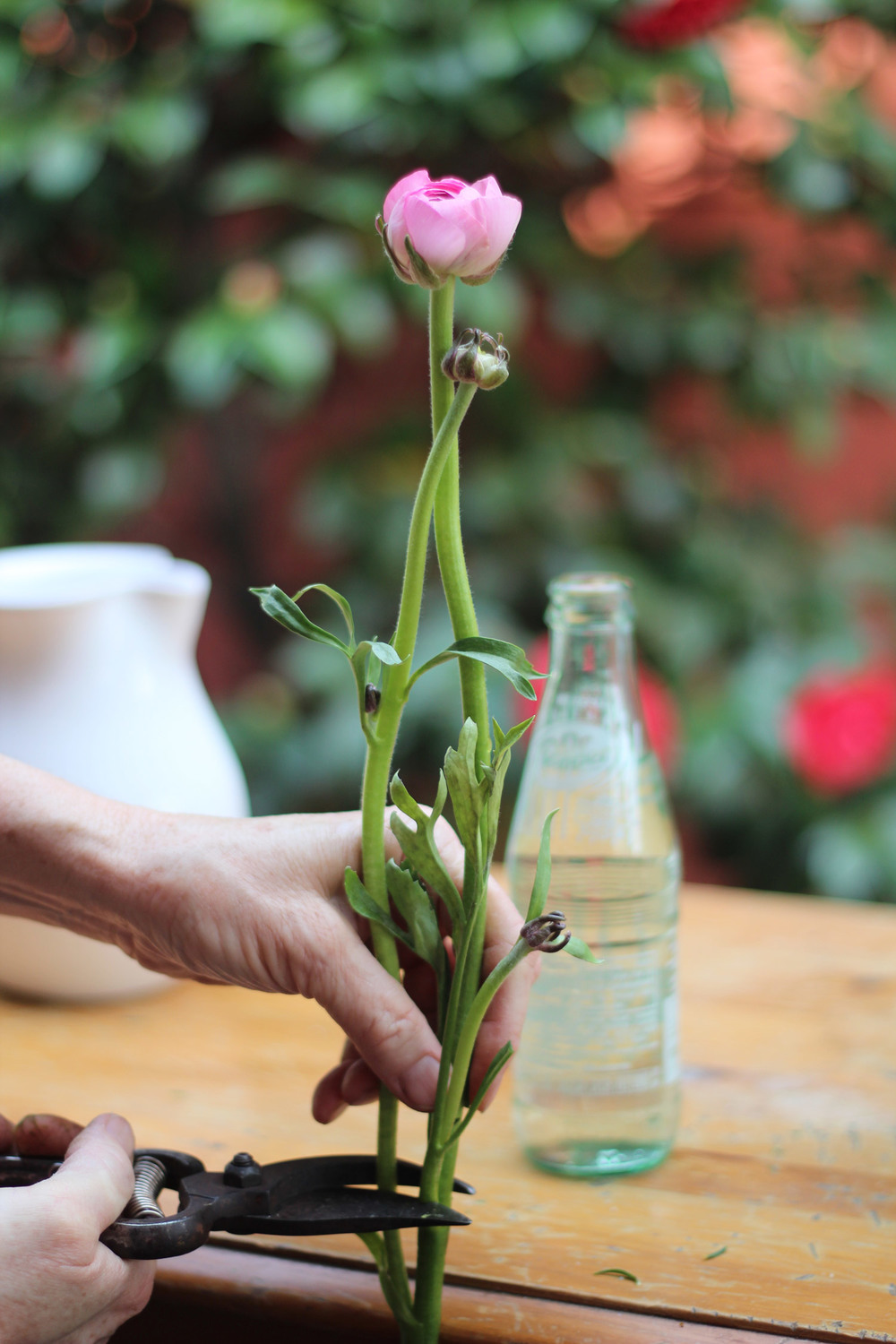Hold flower next to bottle for cut line.
