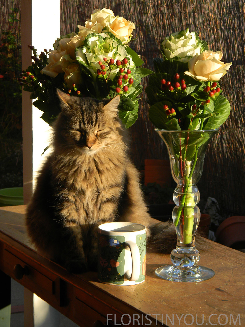 """But not from that cup.  I want the FLOWER WATER!  And get that sun out of my eyes."""