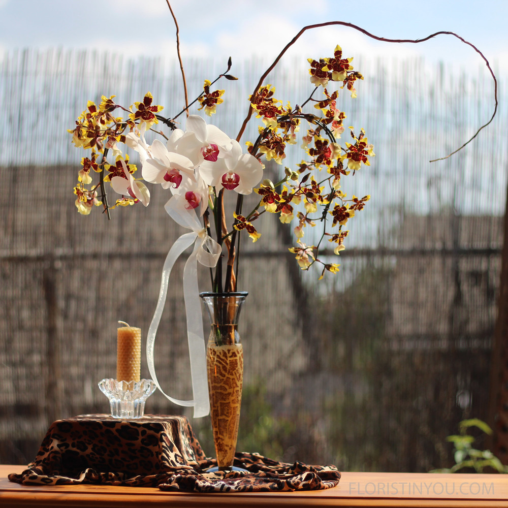 Kosta Boda Safari Leopard Cat Modern Vase