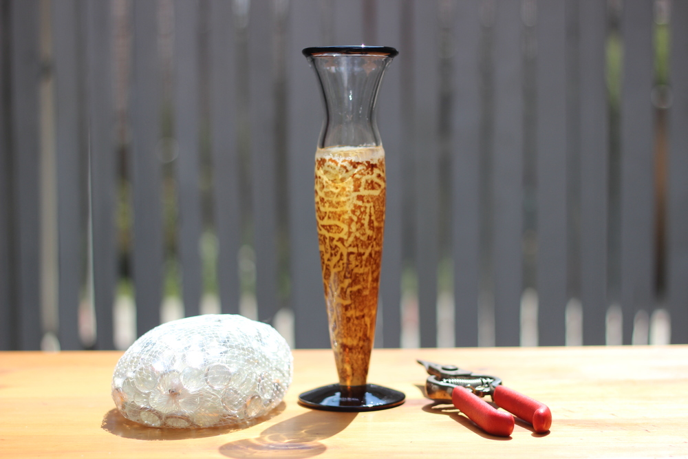 Ta da... the Kosta Boda Safari Leopard Cat Modern vase, some clear marbles, and pruning sheers.