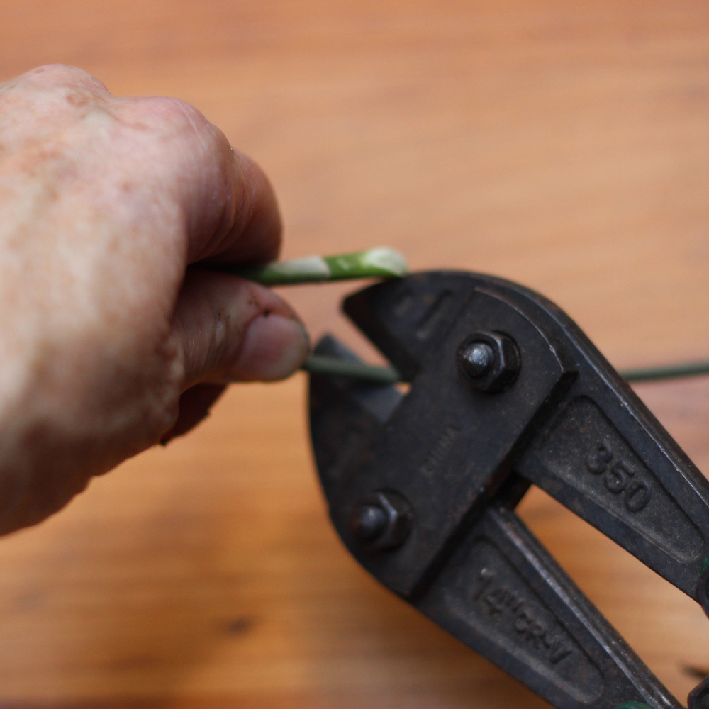 Keep wire support attached.  Pull out of dirt and cut same length as orchid stem.