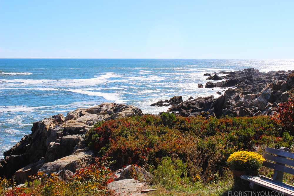 You see the same rocky coast in Kennebunkport.