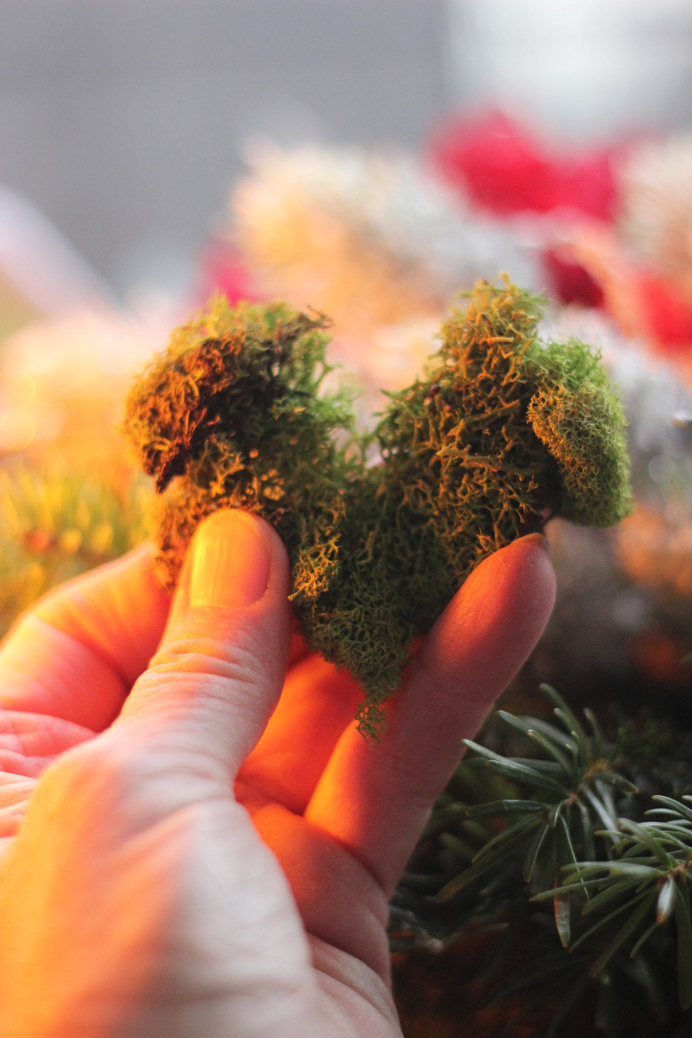 Find a heart shaped piece of moss about 3.5 inches long.