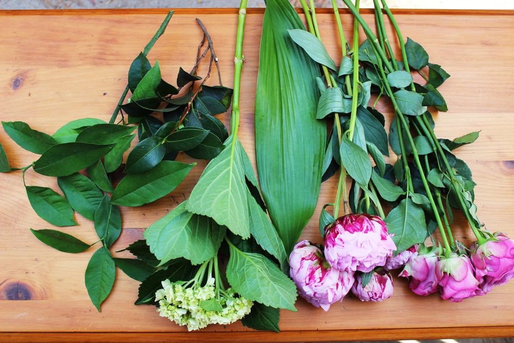 Here are the flowers and greens you will use: Lemon leaf, Camellia stem, Mini Hydrangea, Peonies and Roses.