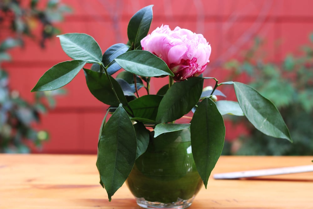 Put large Peony in front.