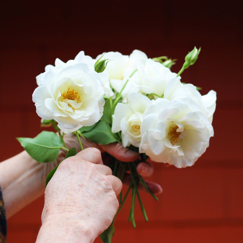 Make hand held bouquet of roses.