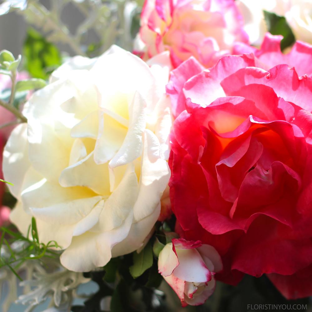 Amazing blooms.