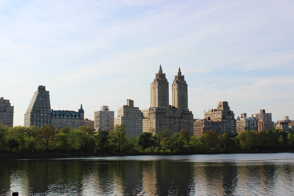 This is the eighteen acre lake in Central Park.