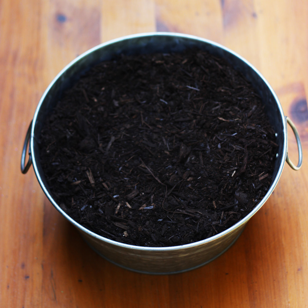 Put a good potting mix soil in the tub.