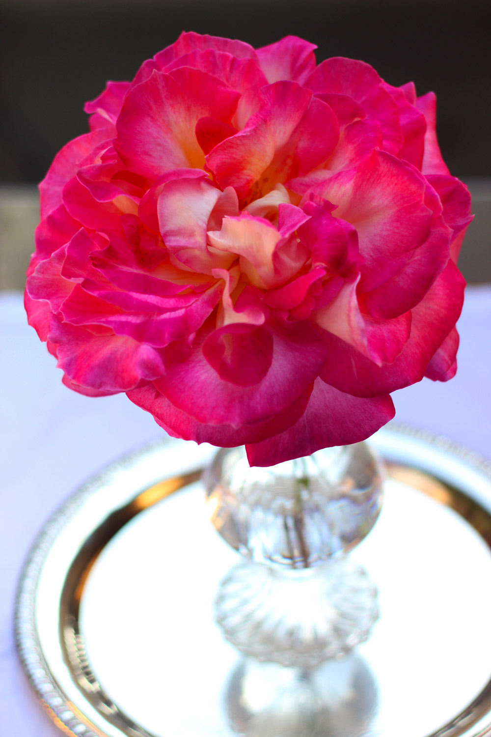 Breathtaking Single Rose Centerpiece
