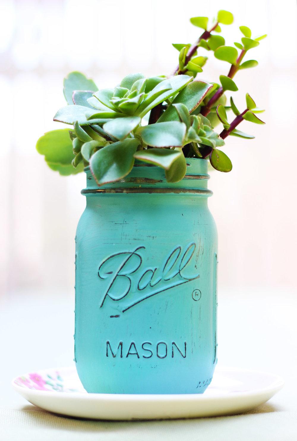 Succulnets in Chalk Painted Mason Jar
