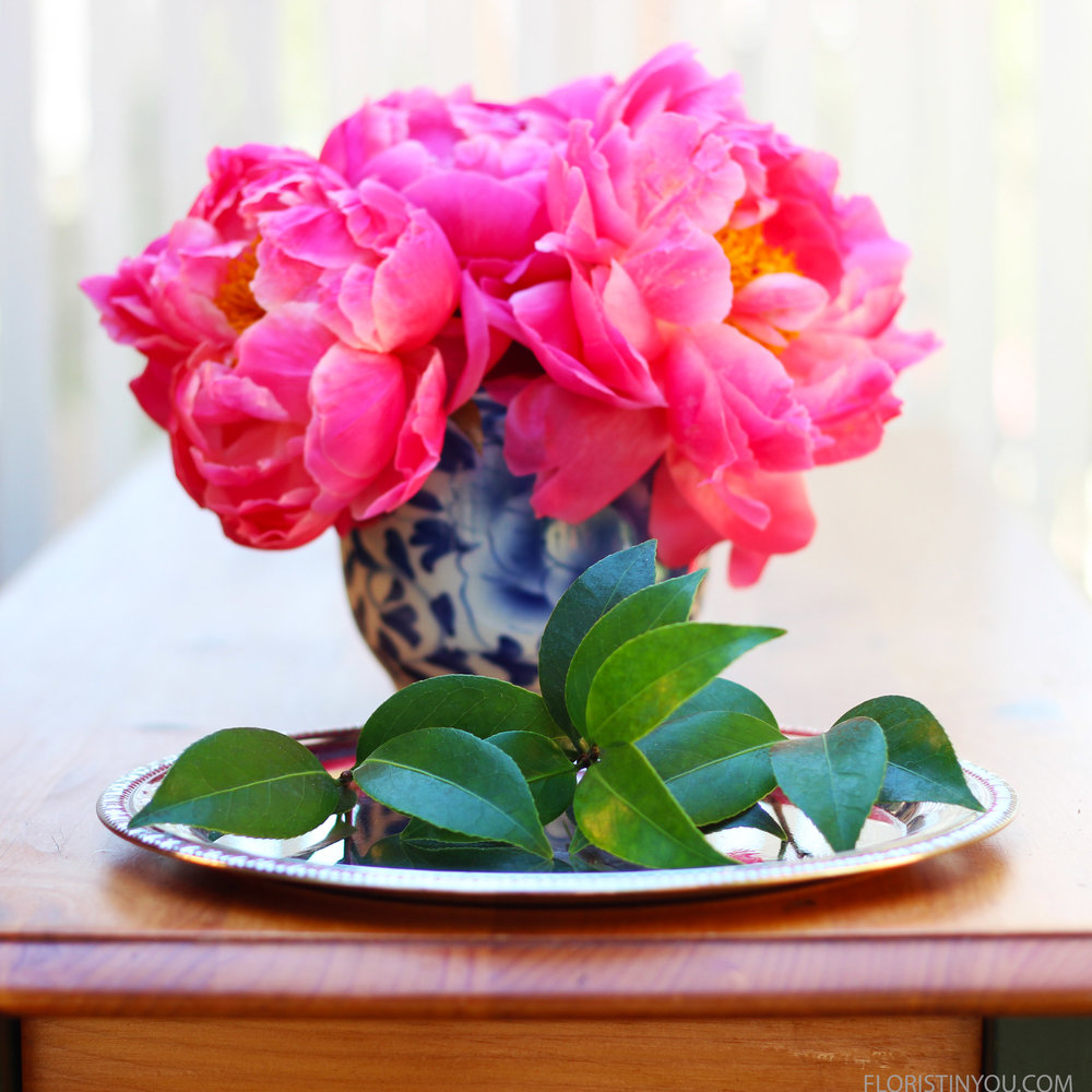 Put 3 or 4 stems of Camellia or Lemon leaves.