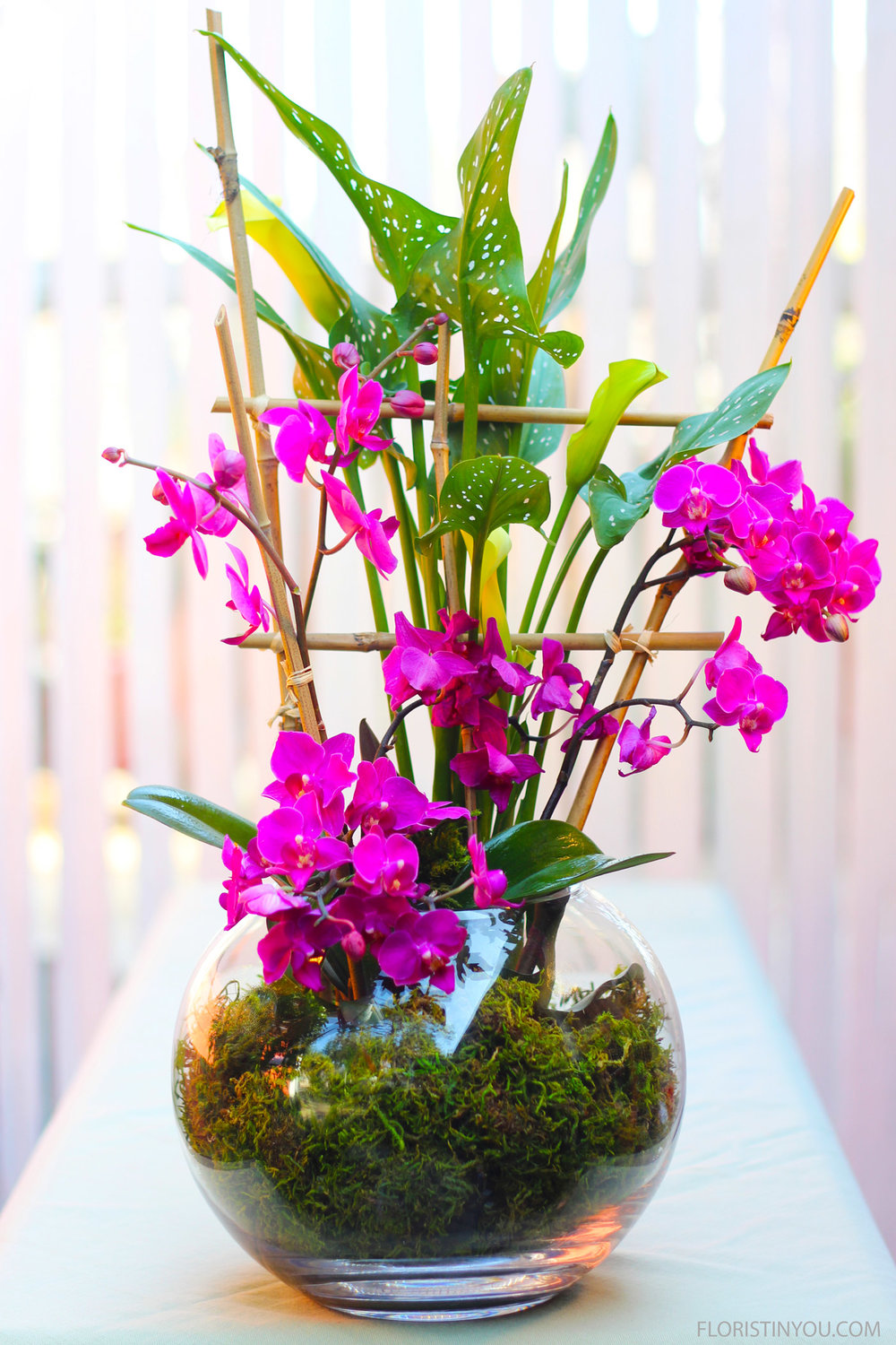 Orchids in a Bubble Bowl