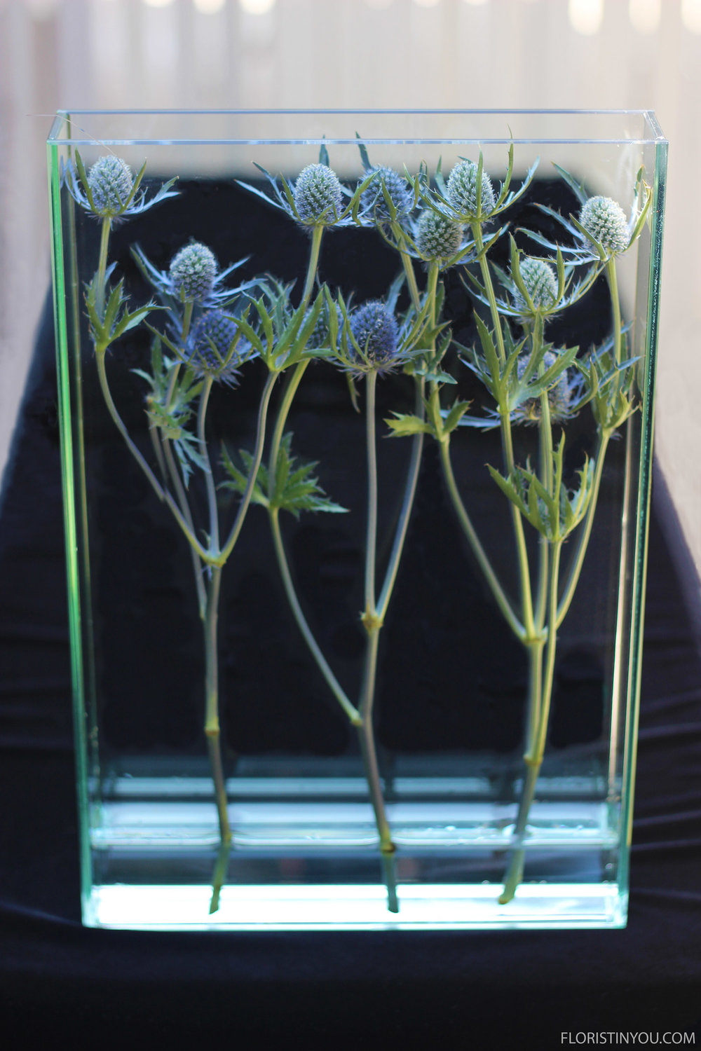 Place your Sea Holly in the vase.