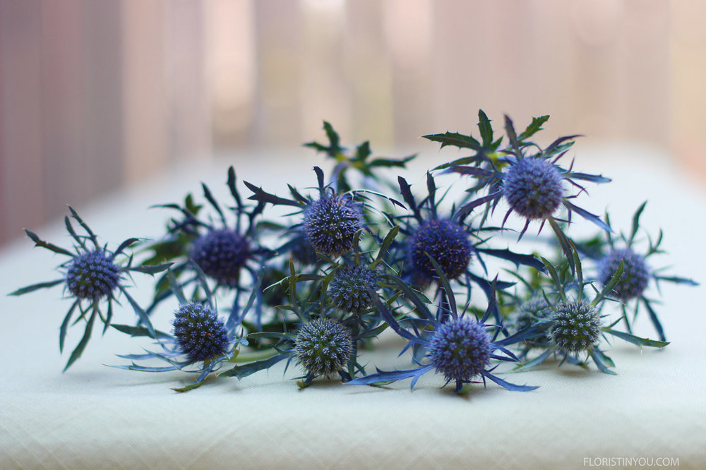 You will use 3 pieces of Sea Holly.