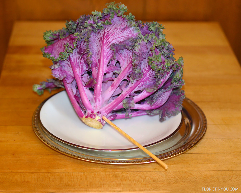 Put skewer on angle into flowering kale.  Cut skewer to 5 inches.
